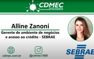 Planejamento para tomada de crédito – Alline Zanoni